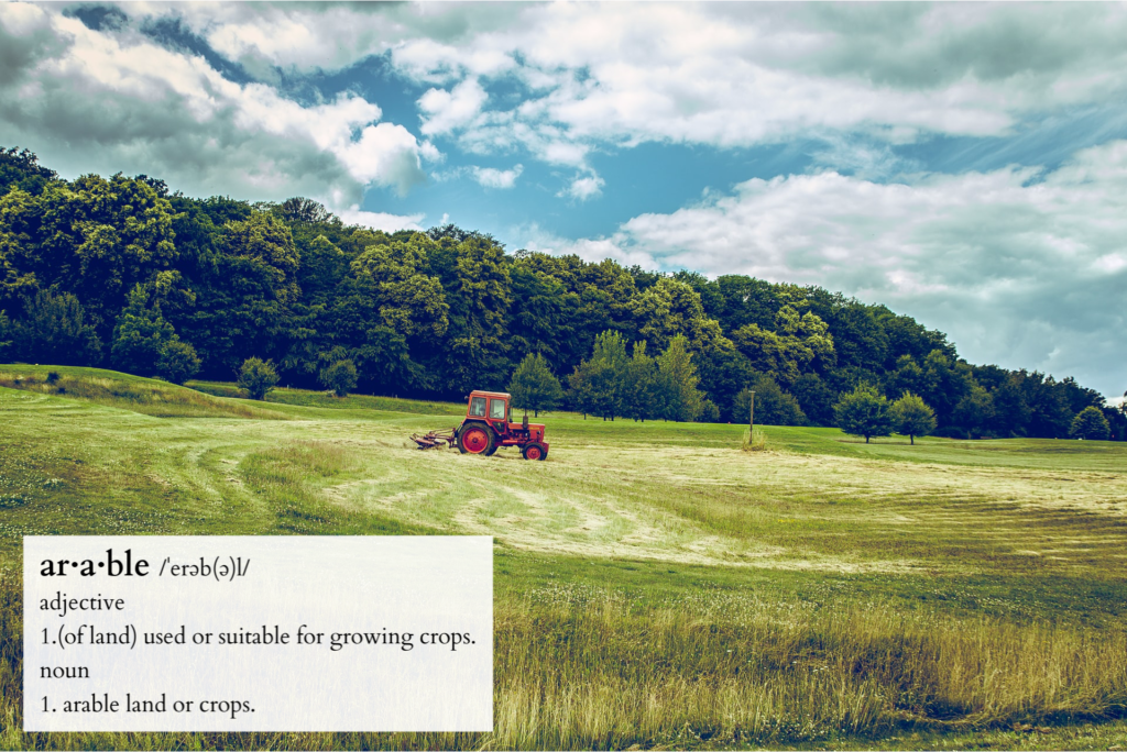 Definition of arable land